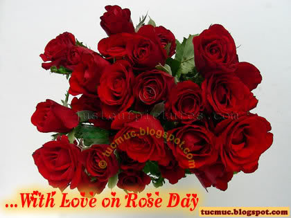 Happy Rose Day Scraps