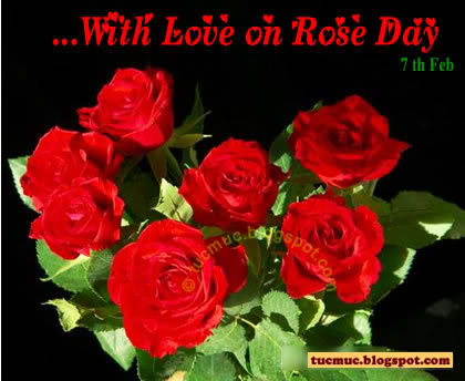 Happy Rose Day Graphics